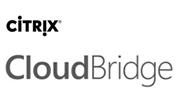 citrix cloudbridge