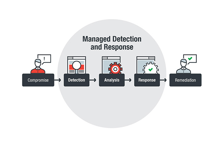 Managed Detection and Response: Helping to Fill in Business Security Gaps